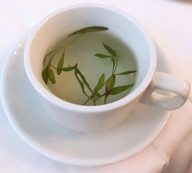 Sonya_Tea.JPG