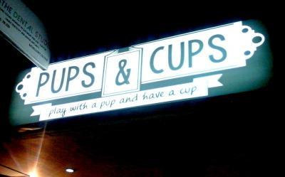 Pups_Cups.jpg