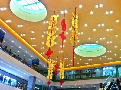 Chinese_SMBF.jpg